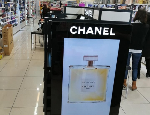 Chanel Rechovot